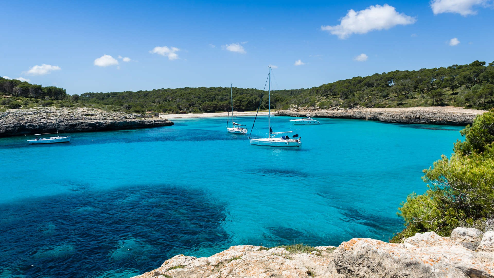 Beautiful landscape of yachts for charter anchored in Cala S`Amarador (Majorca)